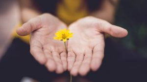 Why Should We Tithe: The Compound Giving Effect
